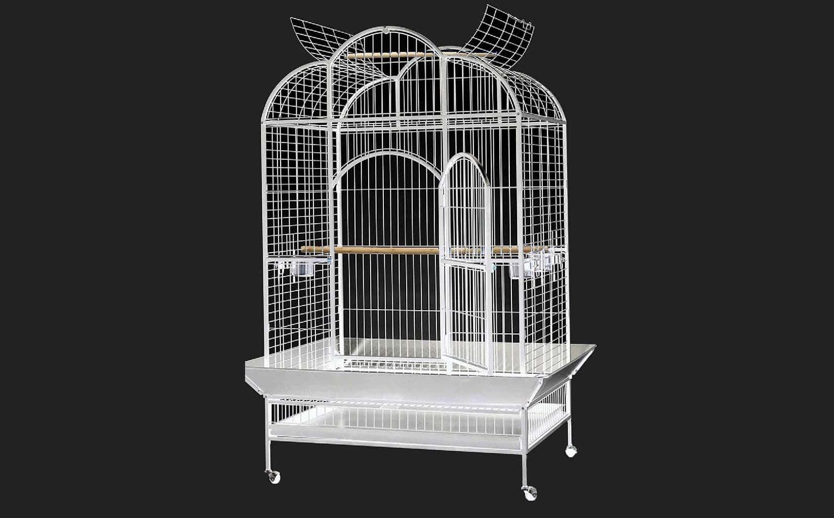 En Ucuz Ayaklı Kuş Kafesi Fiyatları için www.pettema.com